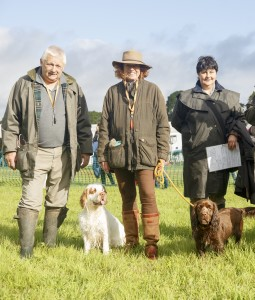 RS2015_Minor Breed Spaniels C_Ring-19