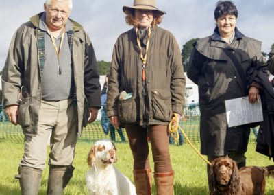Dogs and Romsey Show