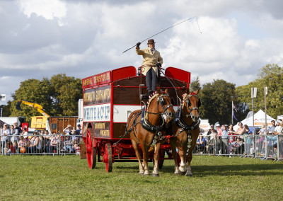 RS2015_Heavy Horses-14