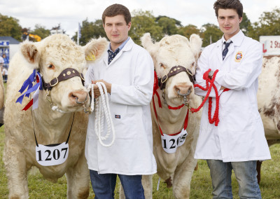 RS2015_Parade of Cattle & Sheep-34