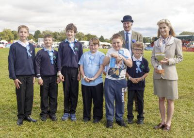 Romsey Show - Where Town and Country Meet